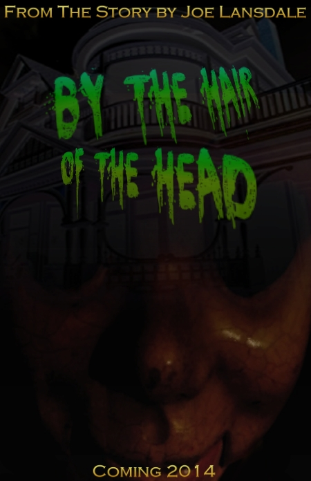 joe lansdale's by the hair of the head